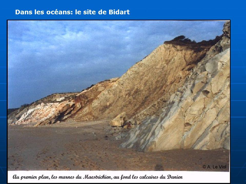Dans les océans: le site de Bidart