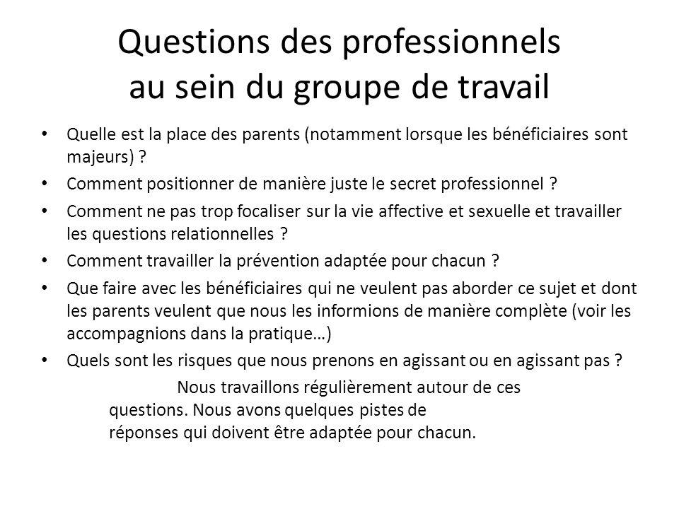 Questions des professionnels au sein du groupe de travail