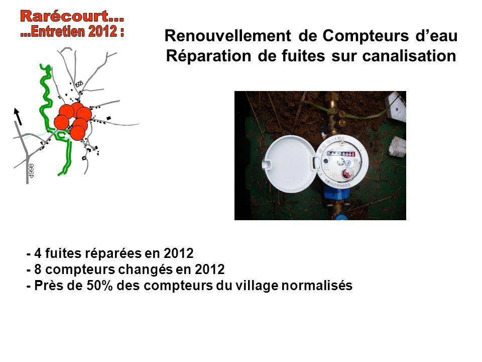 Rarécourt... ...Entretien 2012 : Renouvellement de Compteurs d'eau