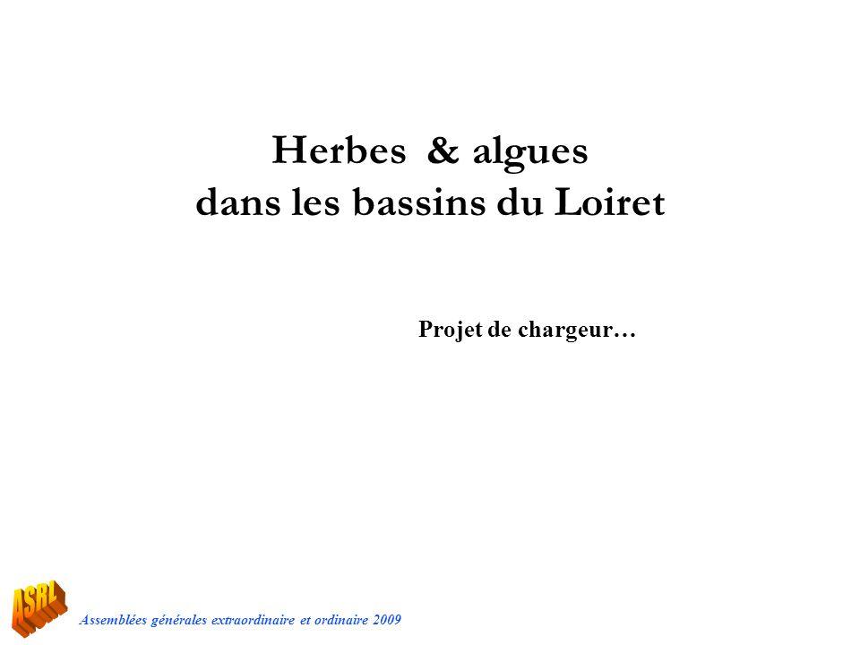 Herbes & algues dans les bassins du Loiret