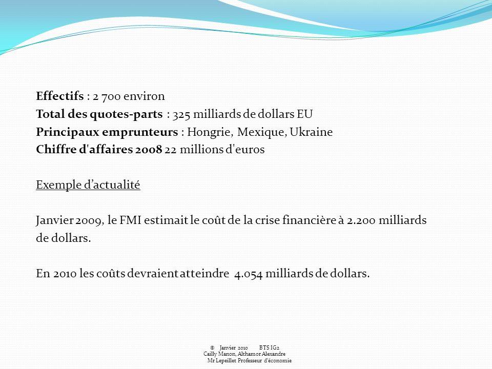Effectifs : 2 700 environ Total des quotes-parts : 325 milliards de dollars EU Principaux emprunteurs : Hongrie, Mexique, Ukraine Chiffre d affaires 2008 22 millions d euros Exemple d'actualité Janvier 2009, le FMI estimait le coût de la crise financière à 2.200 milliards de dollars. En 2010 les coûts devraient atteindre 4.054 milliards de dollars.