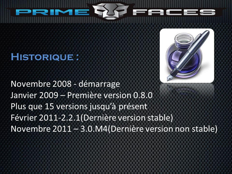 Historique : Novembre 2008 - démarrage