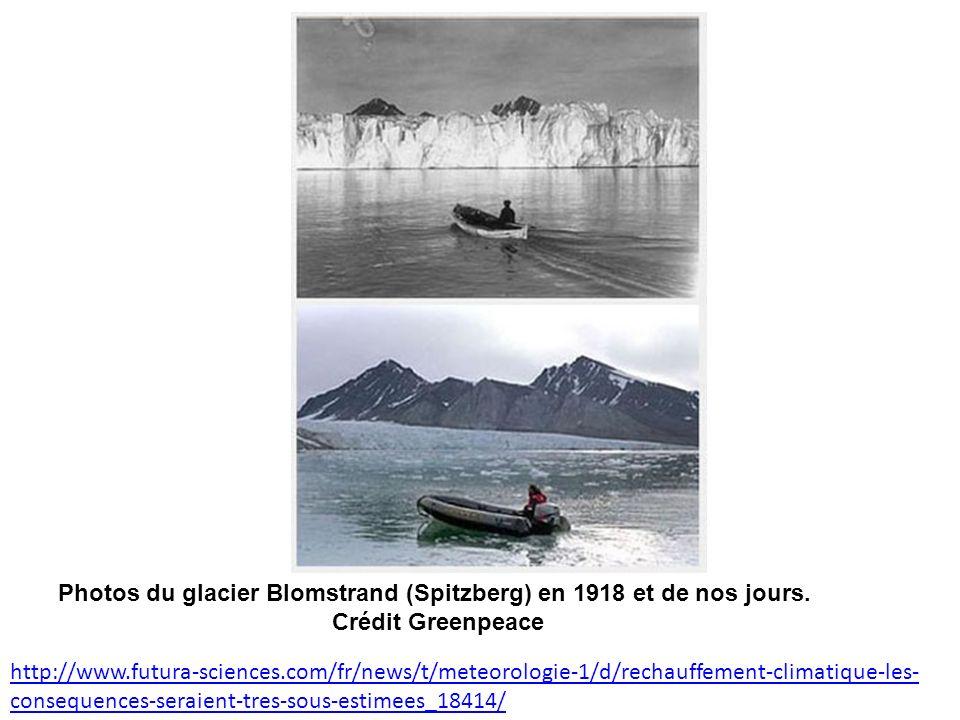 Photos du glacier Blomstrand (Spitzberg) en 1918 et de nos jours.