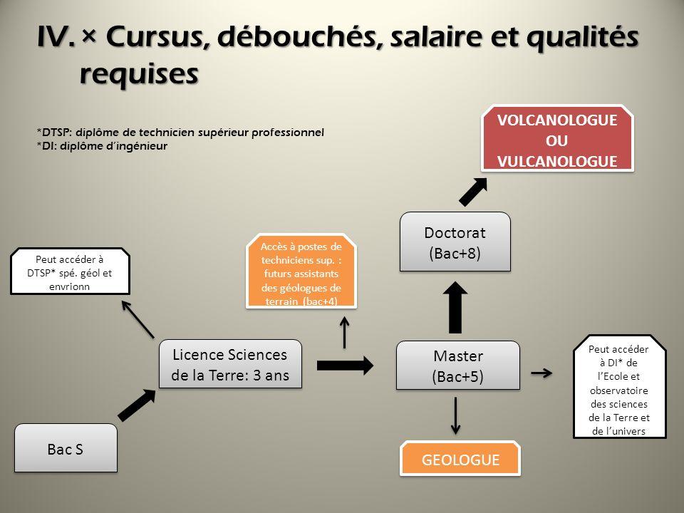 × Cursus, débouchés, salaire et qualités requises