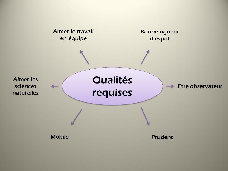 Qualités requises Aimer le travail en équipe Bonne rigueur d'esprit