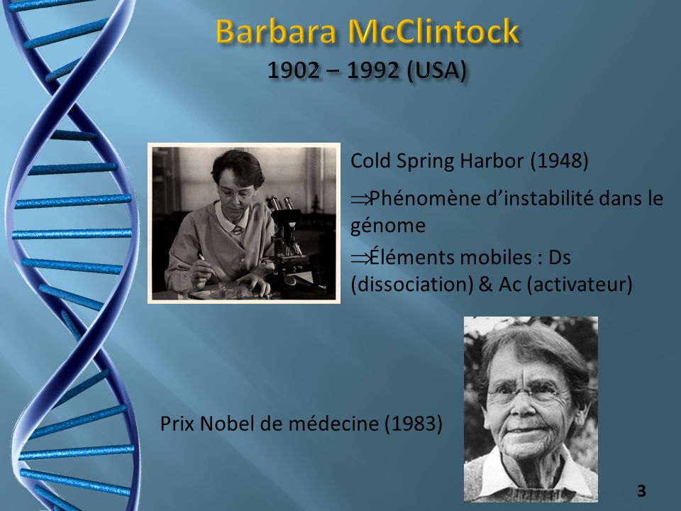 Barbara McClintock 1902 – 1992 (USA)