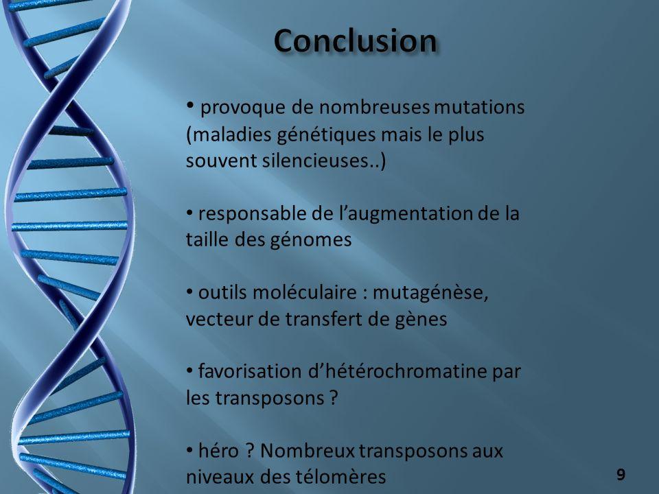 Conclusion provoque de nombreuses mutations (maladies génétiques mais le plus souvent silencieuses..)