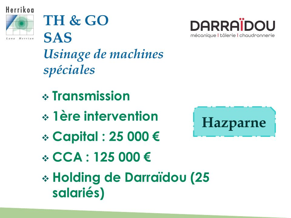 TH & GO SAS Hazparne Usinage de machines spéciales Transmission