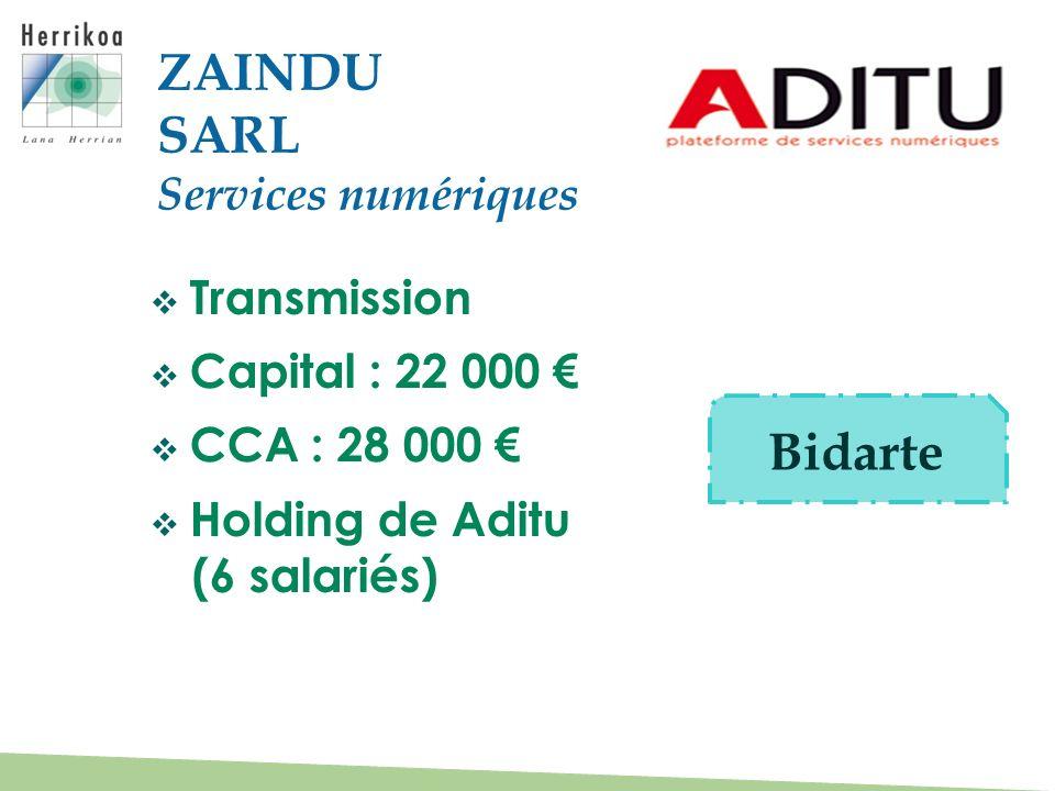 ZAINDU SARL Bidarte Services numériques Transmission