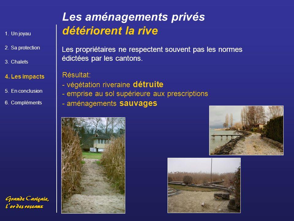 Les aménagements privés détériorent la rive