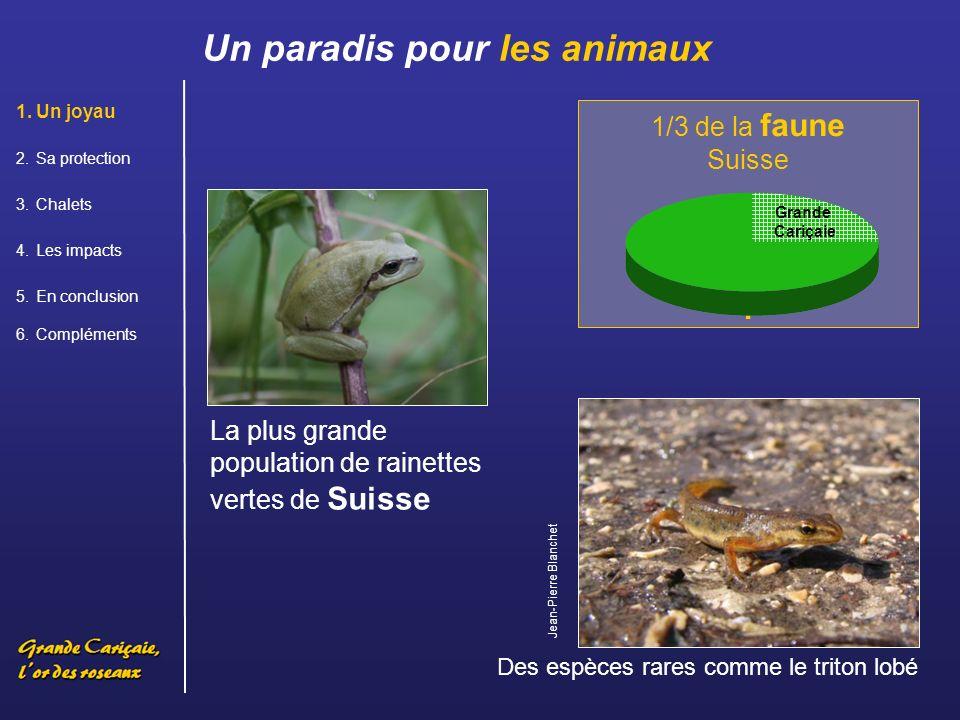 . Un paradis pour les animaux 1/3 de la faune Suisse
