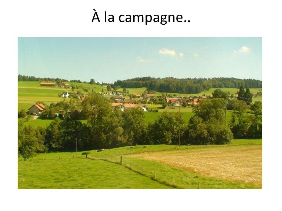 À la campagne..