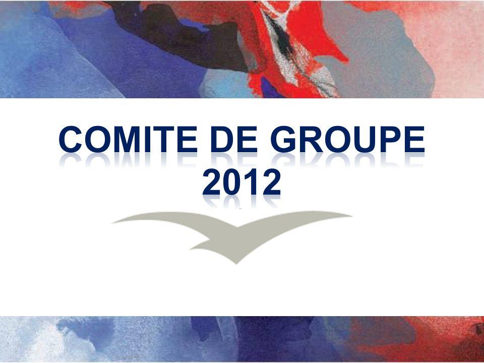 COMITE DE GROUPE 2012
