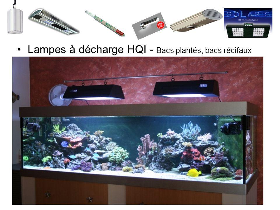 Lampes à décharge HQI - Bacs plantés, bacs récifaux