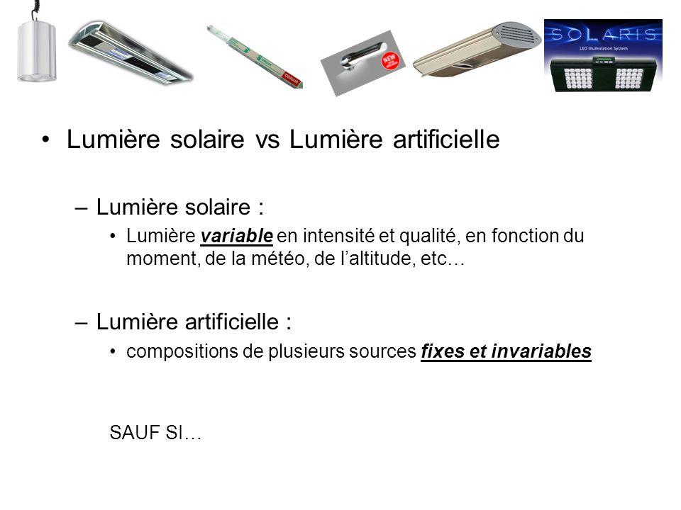 Lumière solaire vs Lumière artificielle