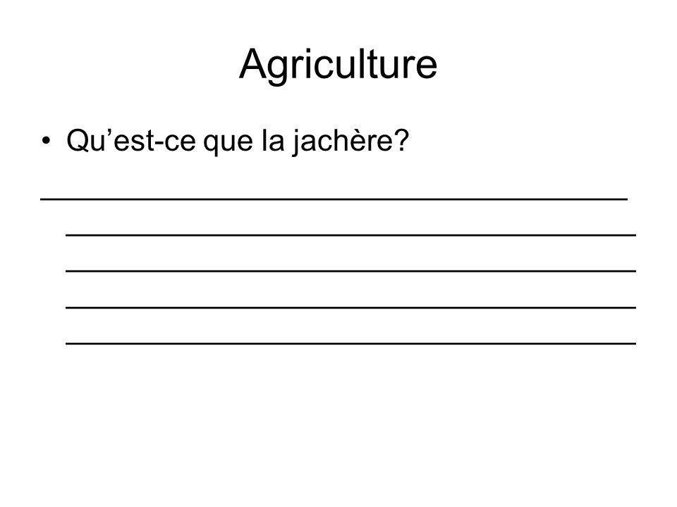 Agriculture Qu'est-ce que la jachère