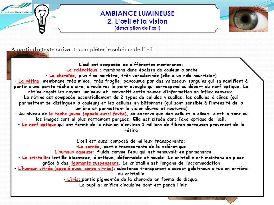AMBIANCE LUMINEUSE 2. L'œil et la vision