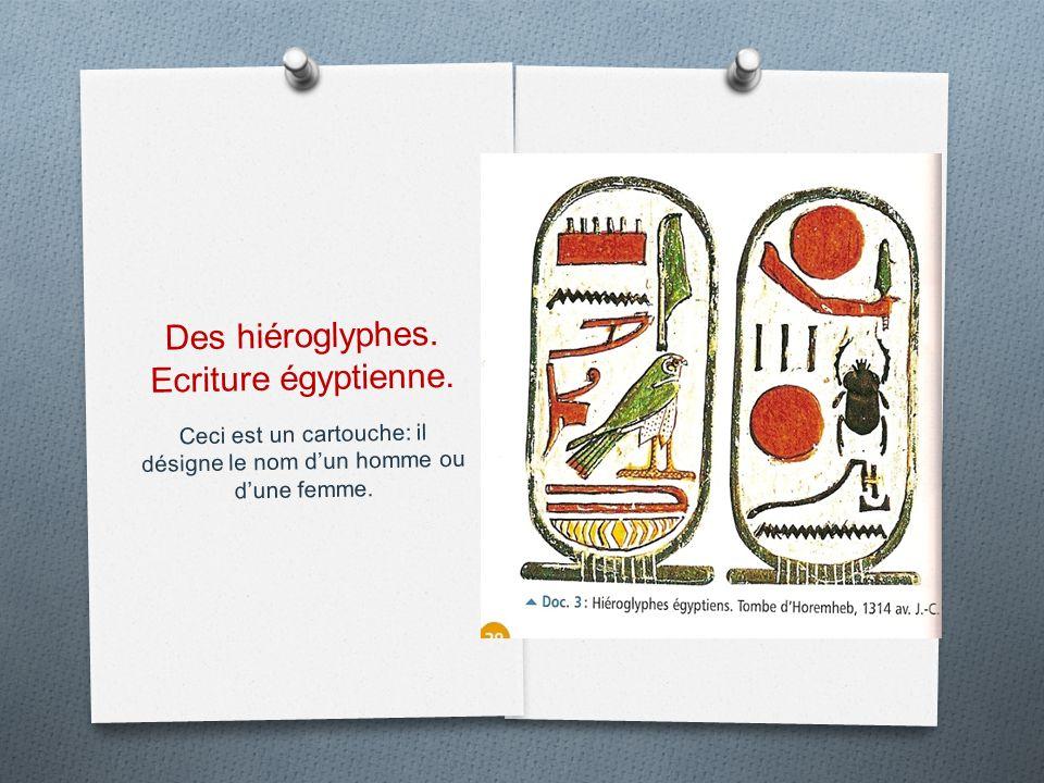 Des hiéroglyphes. Ecriture égyptienne.