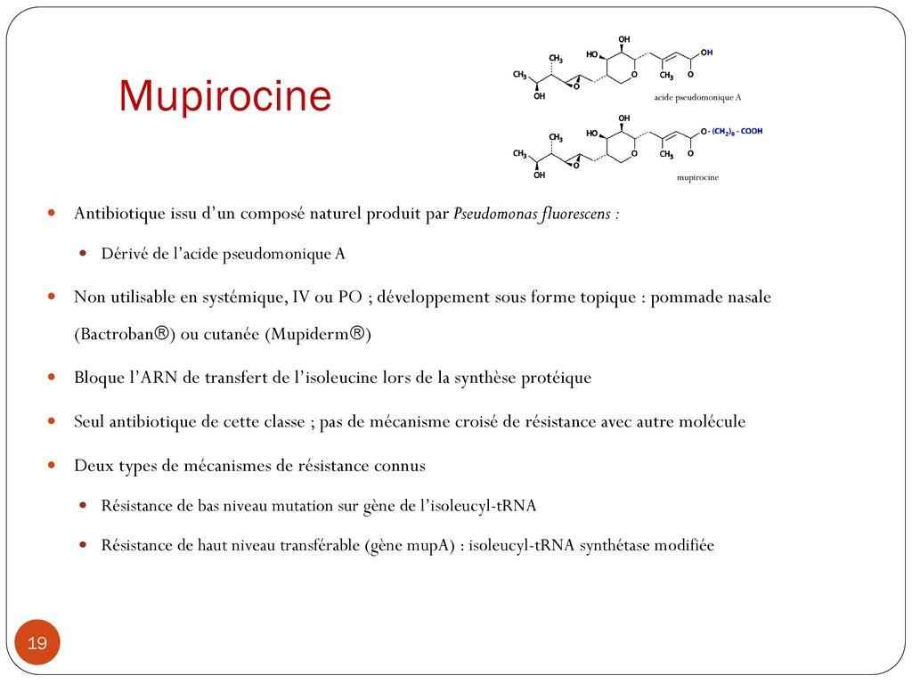 Décontamination du portage de Staphylococcus aureus - ppt
