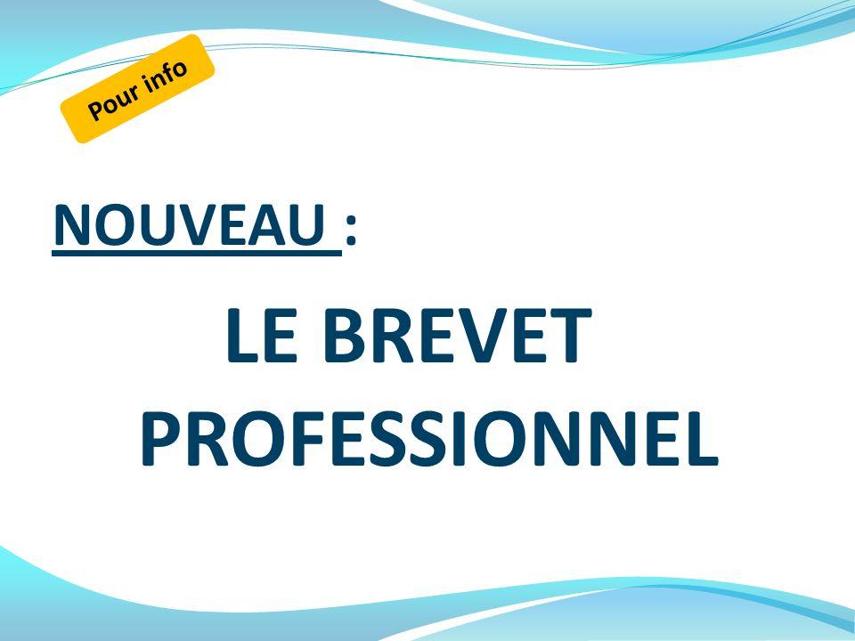 LE BREVET PROFESSIONNEL