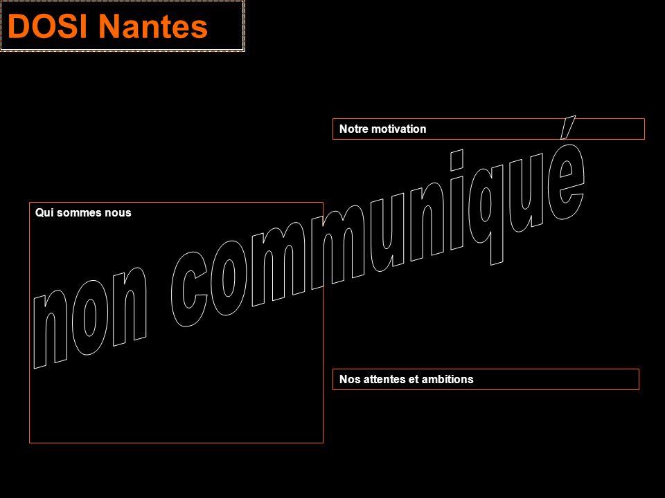 DOSI Nantes non communiqué Notre motivation Qui sommes nous