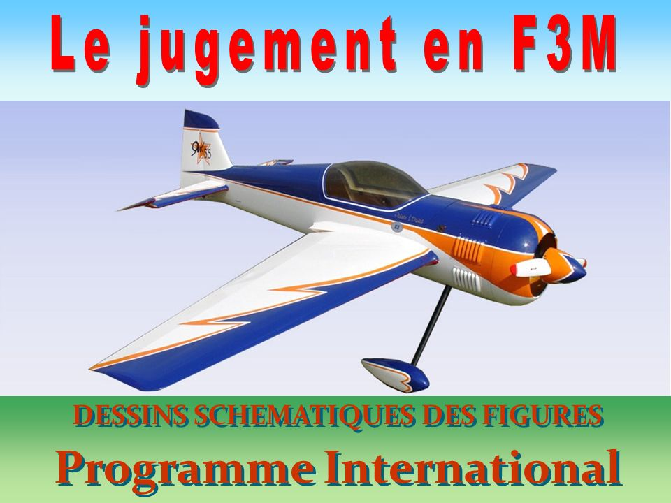 DESSINS SCHEMATIQUES DES FIGURES Programme International