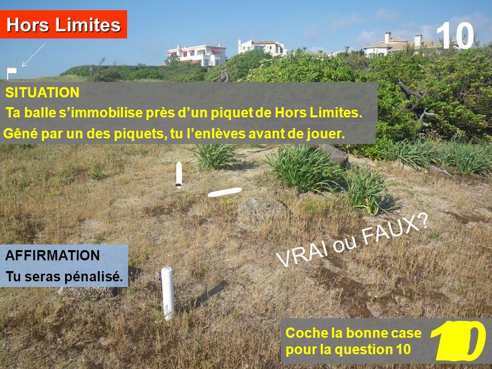 10 1 2 6 8 9 3 7 5 4 10 VRAI ou FAUX Hors Limites SITUATION