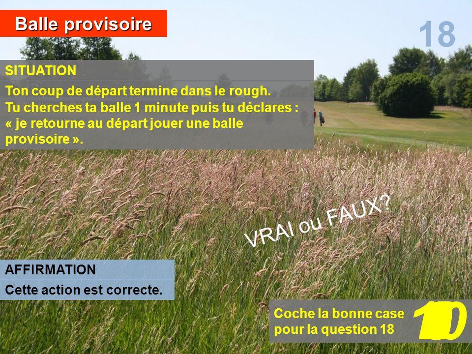 10 1 2 6 7 8 3 5 4 9 18 VRAI ou FAUX Balle provisoire SITUATION