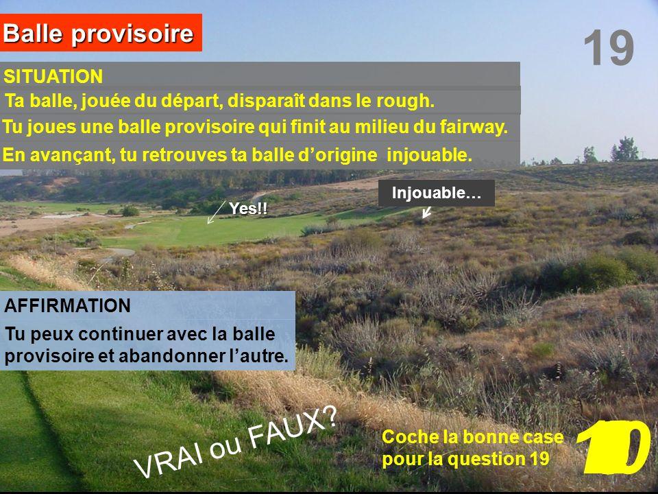10 3 7 8 9 6 5 1 4 2 19 VRAI ou FAUX Balle provisoire SITUATION