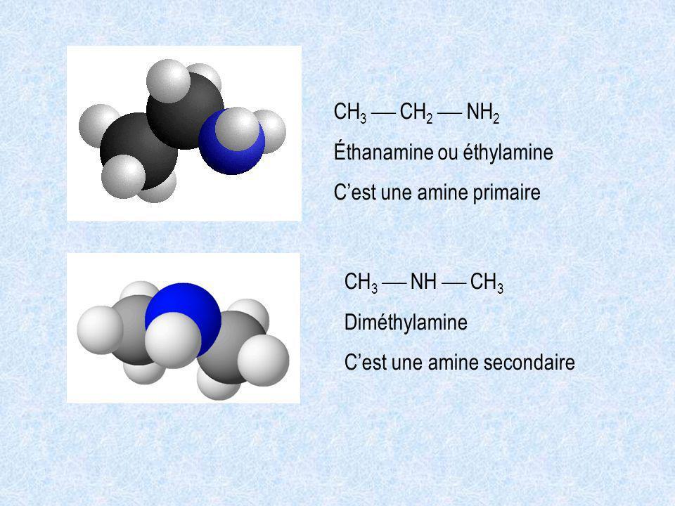 CH3  CH2  NH2 Éthanamine ou éthylamine. C'est une amine primaire. CH3  NH  CH3. Diméthylamine.