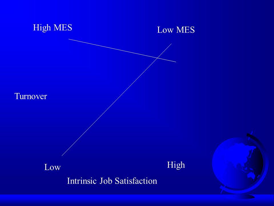 Intrinsic Job Satisfaction