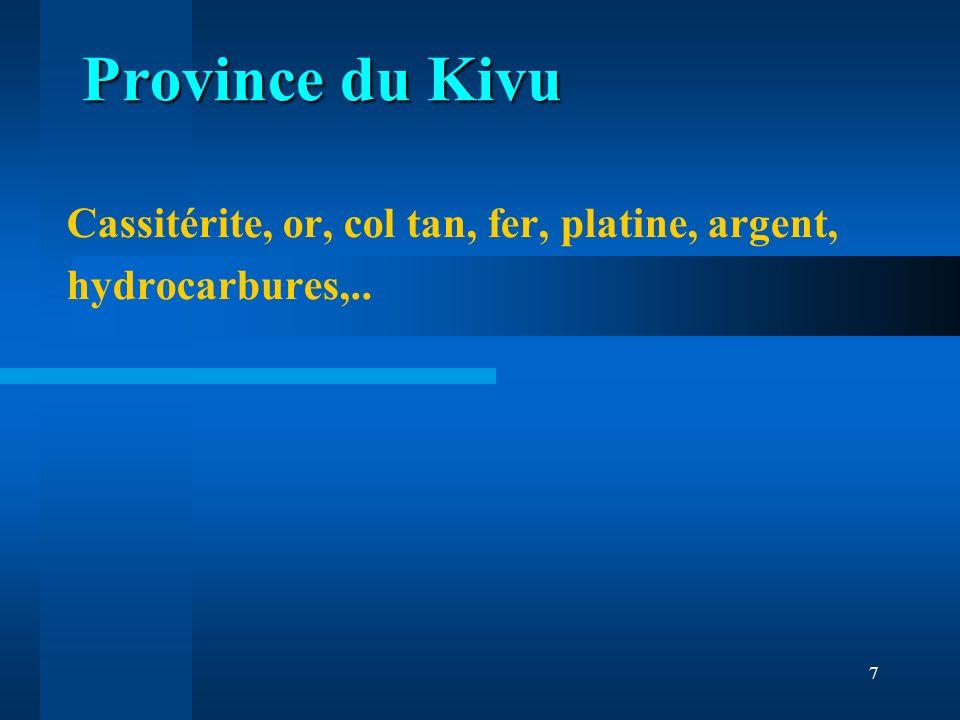 Cassitérite, or, col tan, fer, platine, argent, hydrocarbures,..