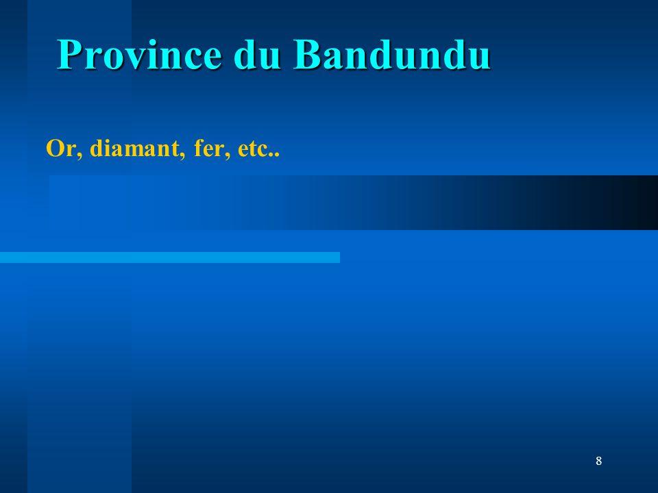 Province du Bandundu Or, diamant, fer, etc..