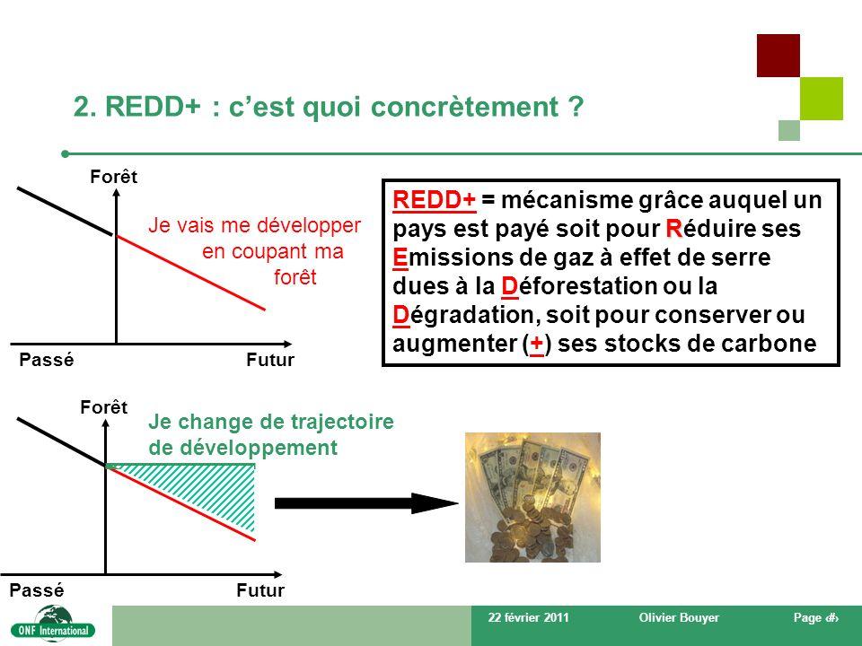 2. REDD+ : c'est quoi concrètement