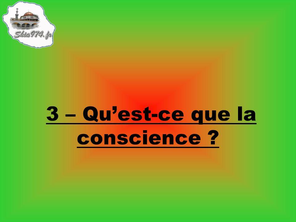 3 – Qu'est-ce que la conscience