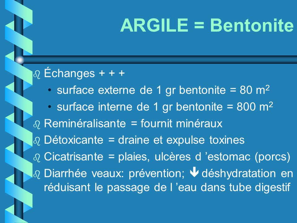 ARGILE = Bentonite Échanges + + +