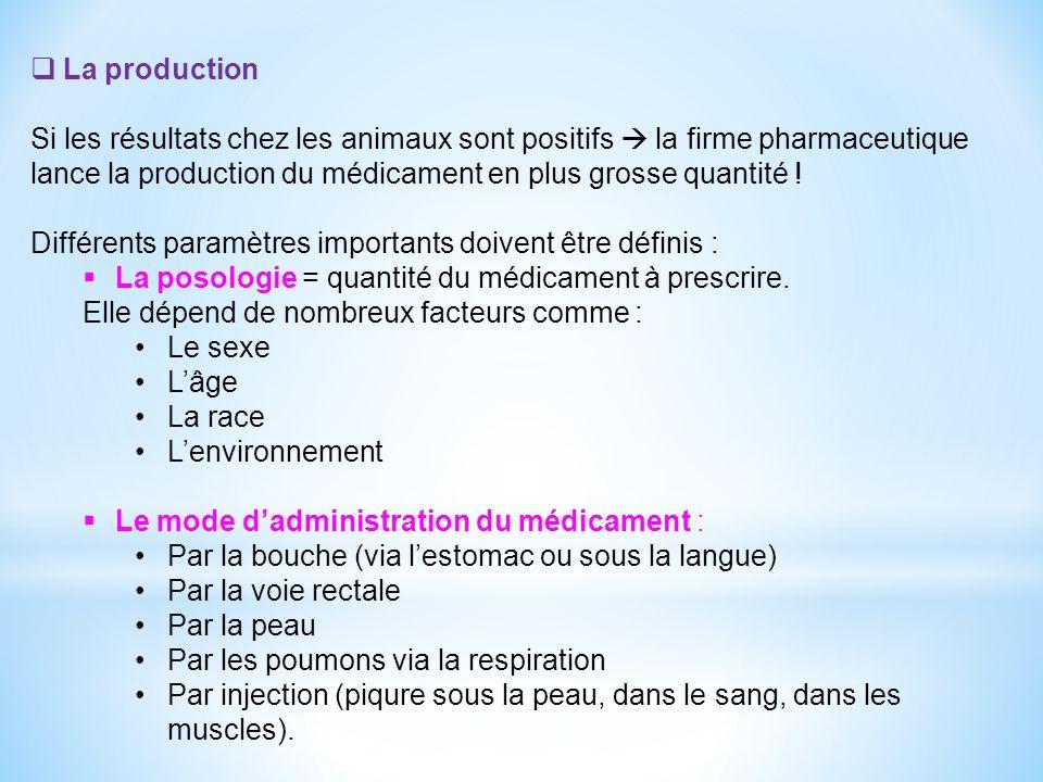 La production Si les résultats chez les animaux sont positifs  la firme pharmaceutique lance la production du médicament en plus grosse quantité !