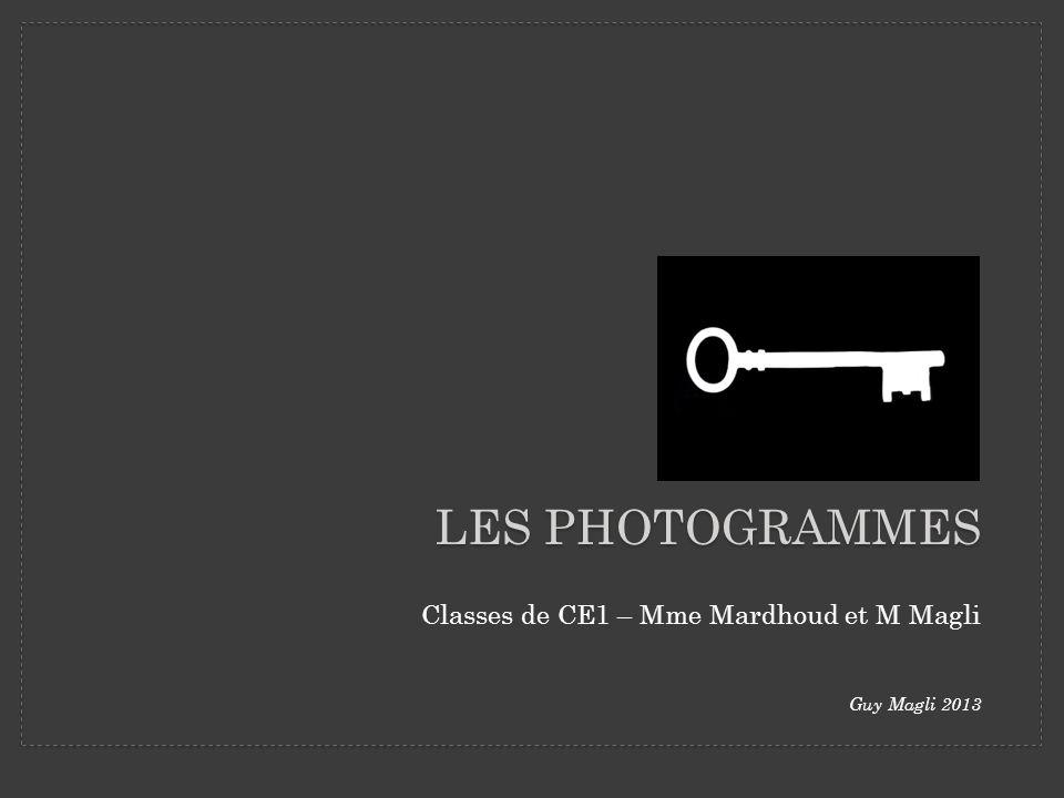 LES PHOTOGRAMMES Classes de CE1 – Mme Mardhoud et M Magli Guy Magli 2013