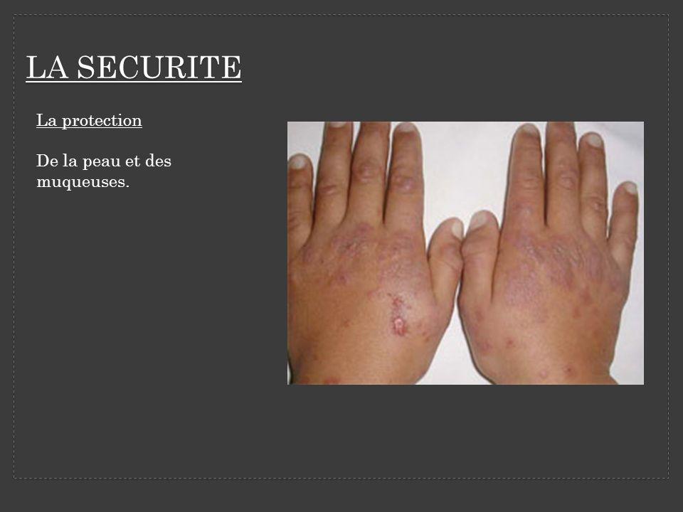 LA SECURITE La protection De la peau et des muqueuses.