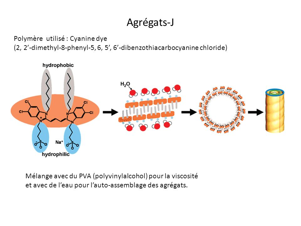 Agrégats-J Polymère utilisé : Cyanine dye