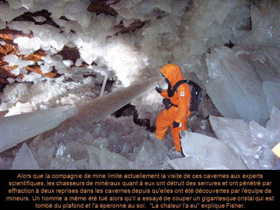 Alors que la compagnie de mine limite actuellement la visite de ces cavernes aux experts scientifiques, les chasseurs de minéraux quant à eux ont détruit des serrures et ont pénétré par effraction à deux reprises dans les cavernes depuis qu elles ont été découvertes par l équipe de mineurs.