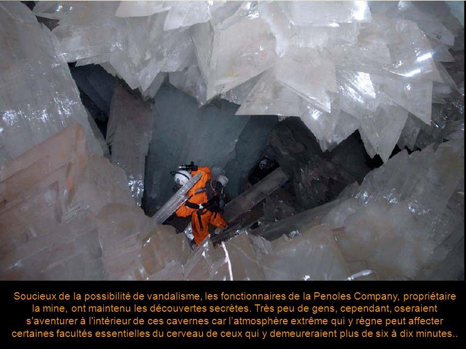 Soucieux de la possibilité de vandalisme, les fonctionnaires de la Penoles Company, propriétaire la mine, ont maintenu les découvertes secrètes.