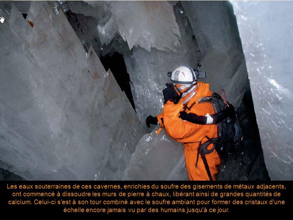 Les eaux souterraines de ces cavernes, enrichies du soufre des gisements de métaux adjacents, ont commencé à dissoudre les murs de pierre à chaux, libérant ainsi de grandes quantités de calcium.