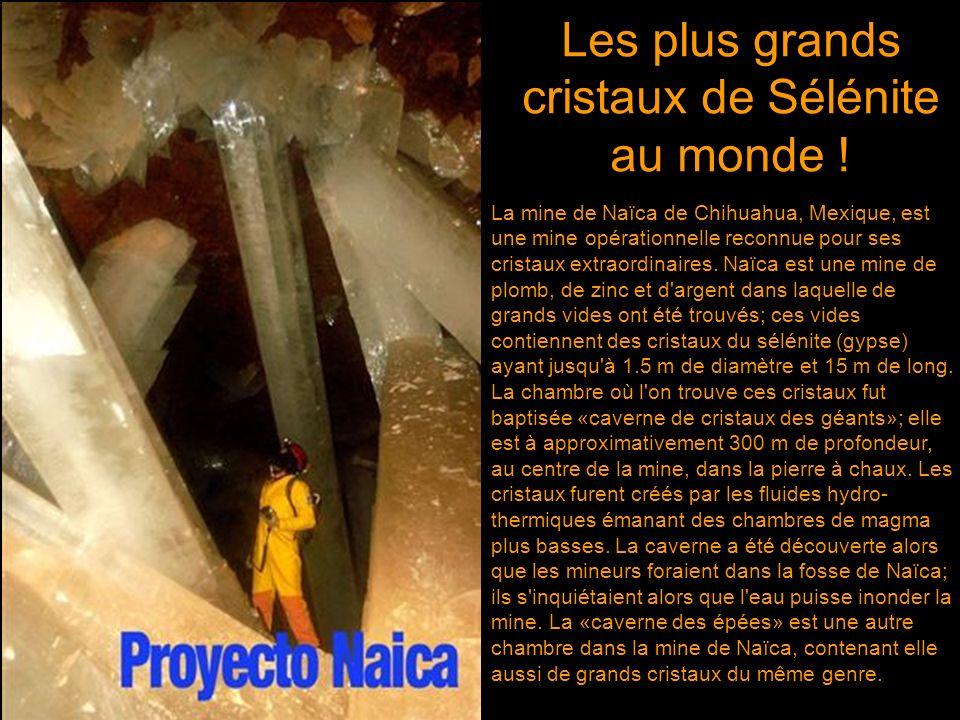 Les plus grands cristaux de Sélénite au monde !