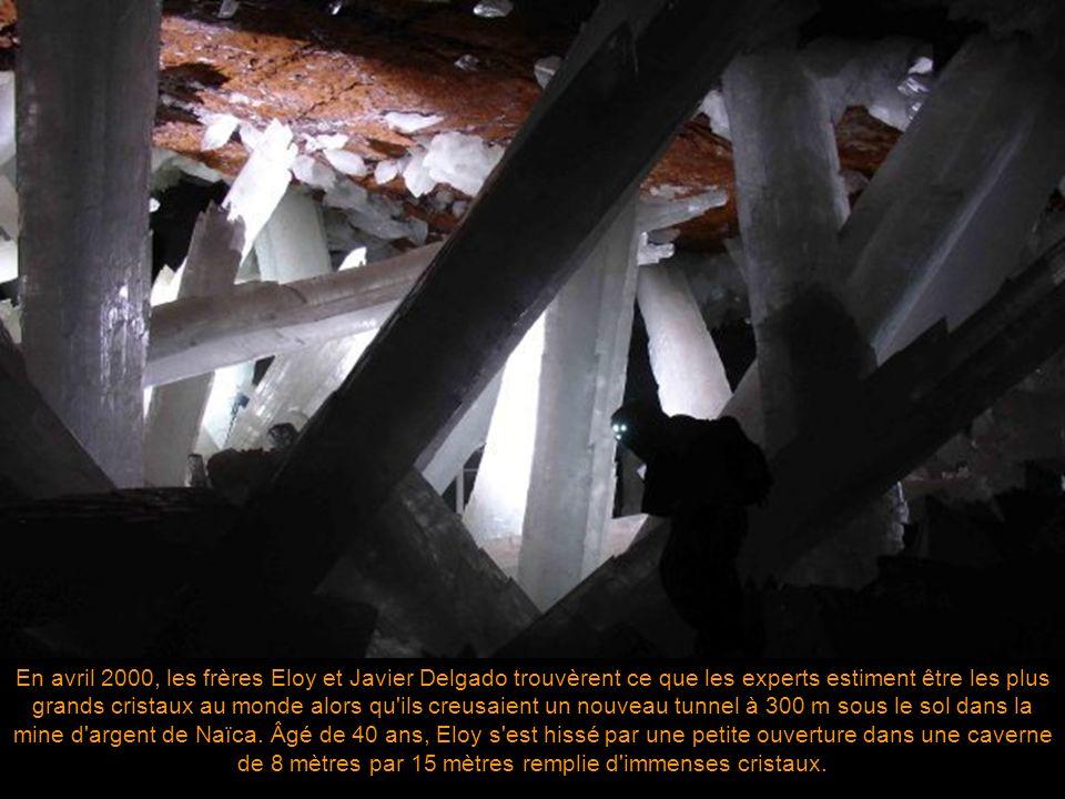 En avril 2000, les frères Eloy et Javier Delgado trouvèrent ce que les experts estiment être les plus grands cristaux au monde alors qu ils creusaient un nouveau tunnel à 300 m sous le sol dans la mine d argent de Naïca.