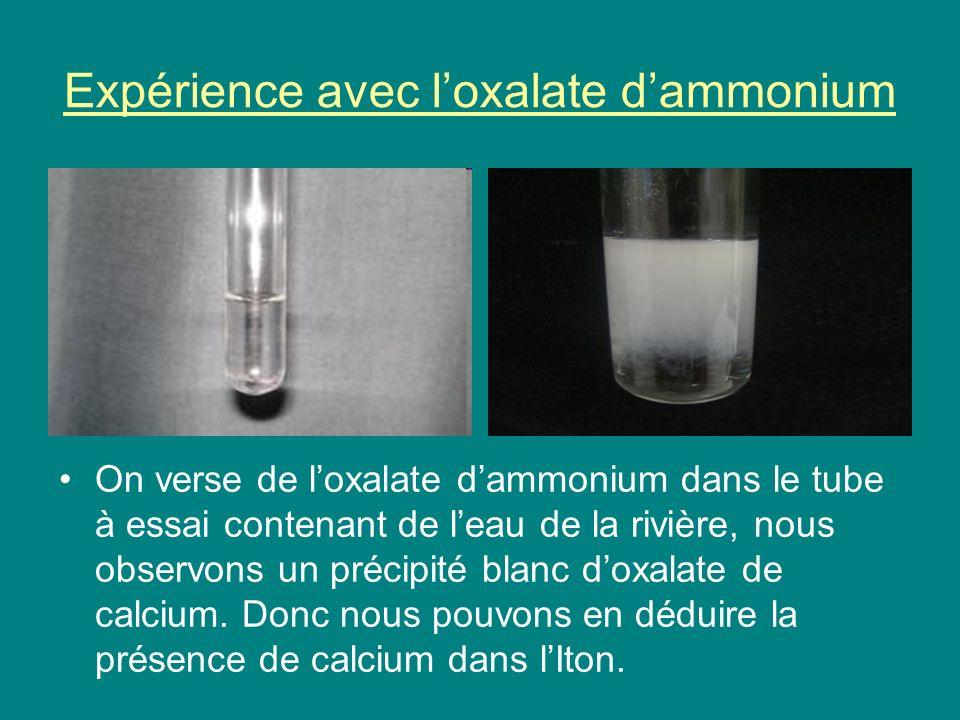 Expérience avec l'oxalate d'ammonium