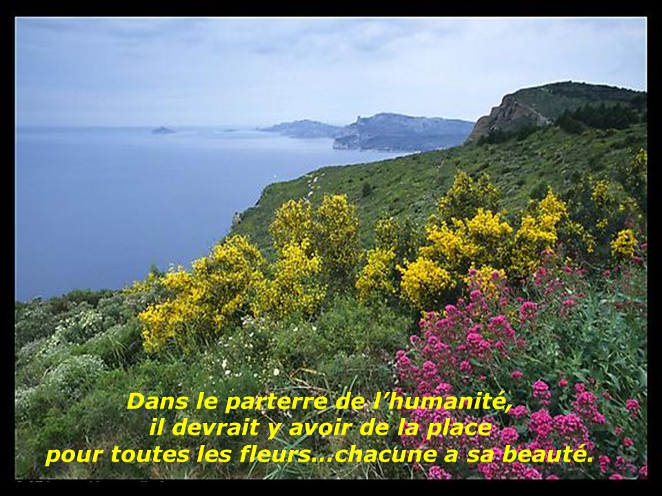 Dans le parterre de l'humanité, il devrait y avoir de la place pour toutes les fleurs…chacune a sa beauté.