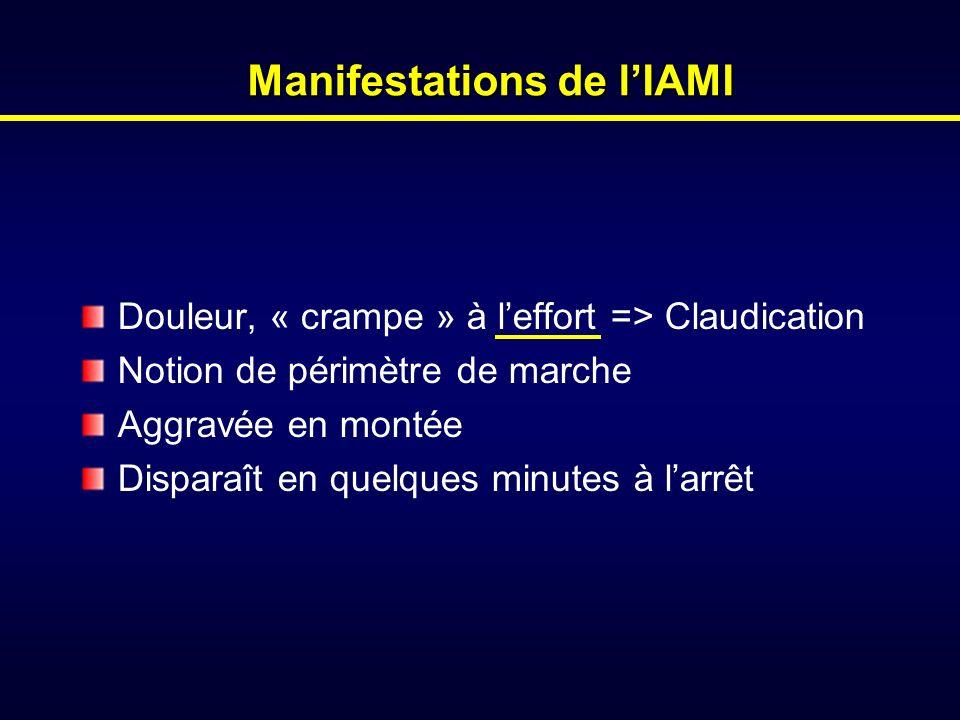 Manifestations de l'IAMI