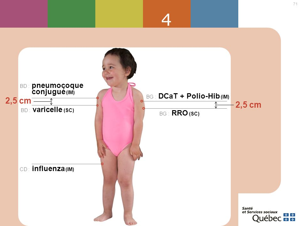 4 2,5 cm 2,5 cm BD : pneumocoque conjugué (IM)