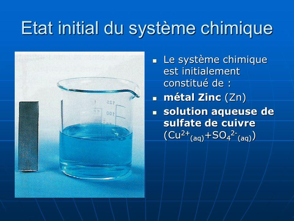 Etat initial du système chimique